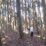 山から木を調達